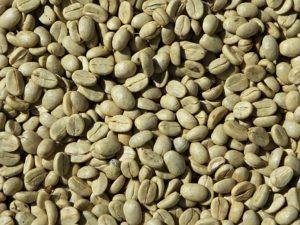 BEST GREEN COFFEE BEANS POWDER ONLINE
